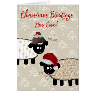 Christmas Card - Funny Sheep