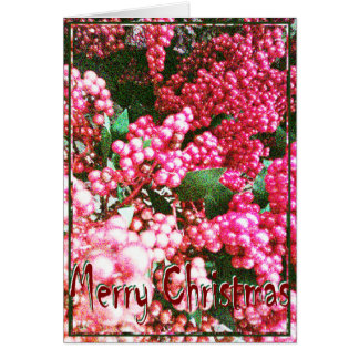 Christmas Card - Holly Berries