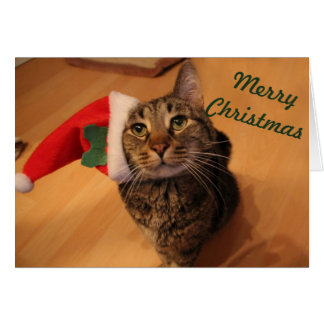 Christmas Card - Rei 1