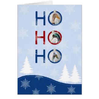 Christmas card with run ducks