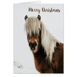 Christmas Card with Shaggy Horse in Snow