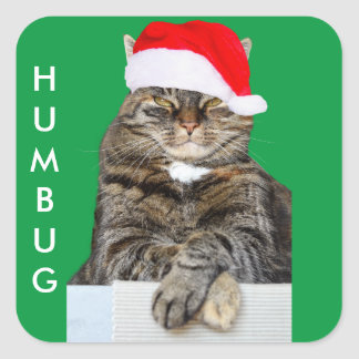 Christmas Cat Humbug Photo with Santa Hat Square Sticker