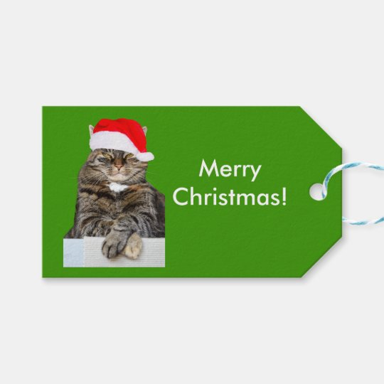 Christmas Cat Photo in Santa Hat Gift Tag