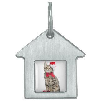 Christmas cat - santa claus cat - cute kitten pet tag