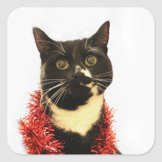 Christmas Cat Square Sticker