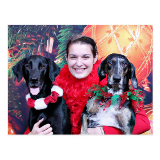 Christmas - Catahoula Brita and Labrador Cooper Postcard