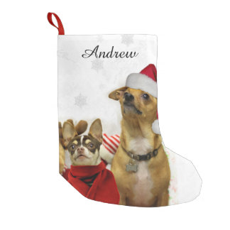 Christmas Chihuahua dogs personalized stocking