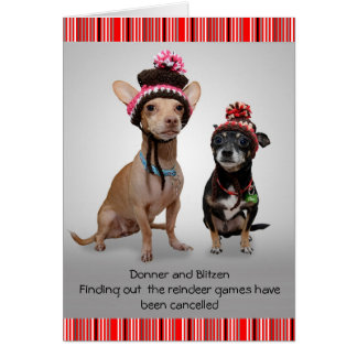 Christmas Chihuahua's Card