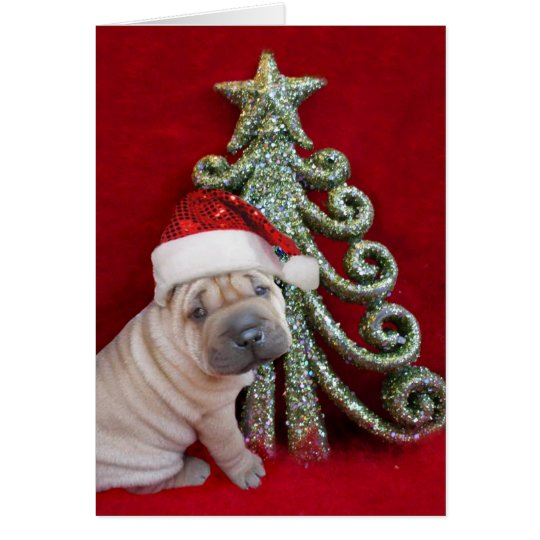 Christmas Chinese shar pei puppy Card