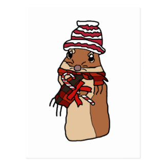 Christmas Chipmunk Hamster Gerbil Cartoon Drawing Postcard