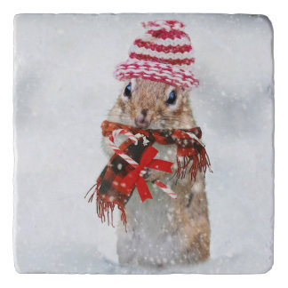 Christmas chipmunk trivet