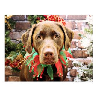 Christmas - Chocolate Labrador - Hershey Postcard