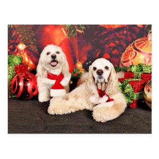 Christmas - Cocker - Toby, Havanese - Little T Postcard