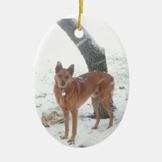 Christmas Collection Pet or Family Photo Ceramic Oval Ornament
