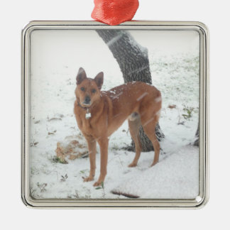 Christmas Collection Pet or Family Photo Silver-Colored Square Ornament