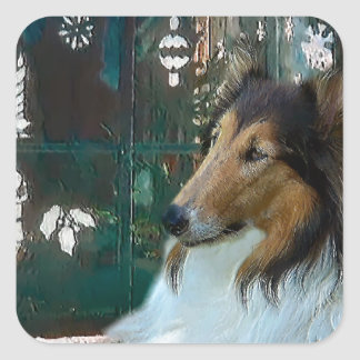 Christmas Collie at Window Square Sticker