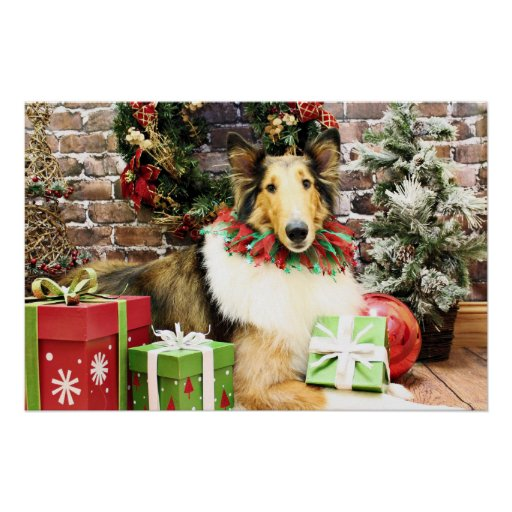 Christmas - Collie - Bean Poster