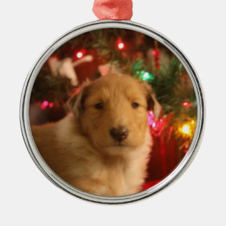 Christmas Collie Silver-Colored Round Ornament