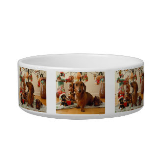 Christmas Dachshund Bowl