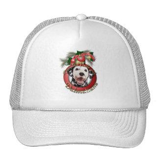 Christmas - Deck the Halls - Dalmatians Mesh Hats