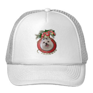 Christmas - Deck the Halls - Malteses Mesh Hat