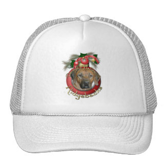 Christmas - Deck the Halls - Ridgebacks Hat