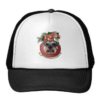 Christmas - Deck the Halls - Schnauzers Trucker Hat