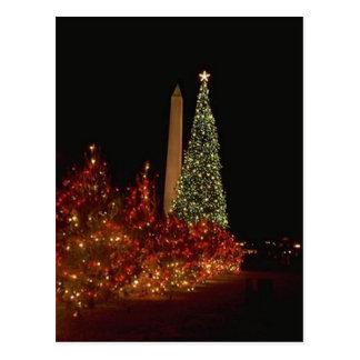 Christmas decorations on the Washington DC  Mall Postcard