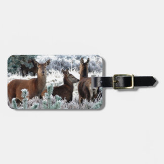 Christmas deer favor luggage tag