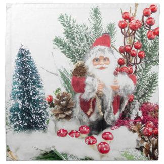 Christmas dish with santa Claus and decoration Cloth Napkins