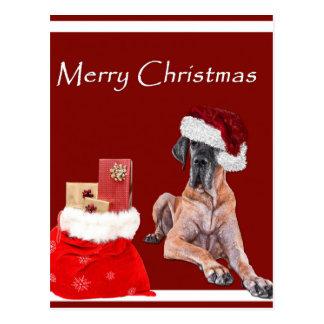 Christmas Dog Great Dane Postcard