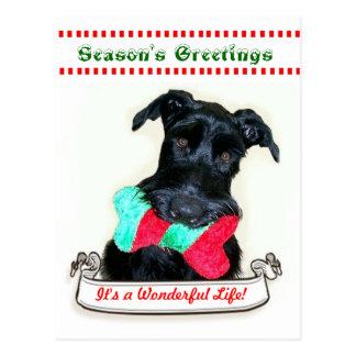 Christmas Dog It's a Wonderful Life Postcard