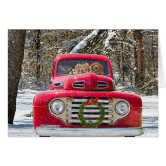 Christmas dogs in old truck card
