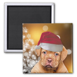 Christmas Dogue de Bordeaux Magnet