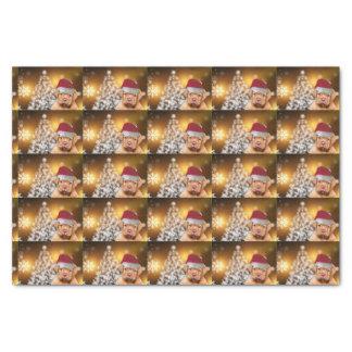 Christmas Dogue de Bordeaux tissue paper