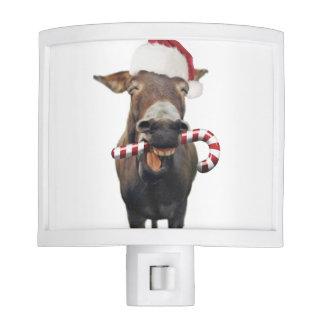 Christmas donkey - santa donkey - donkey santa night lite