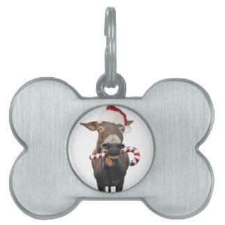 Christmas donkey - santa donkey - donkey santa pet name tag