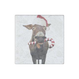 Christmas donkey - santa donkey - donkey santa stone magnets