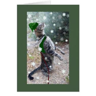 Christmas Elf Tabby Cat Card