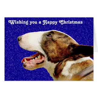 Christmas English Bull Terrier Card