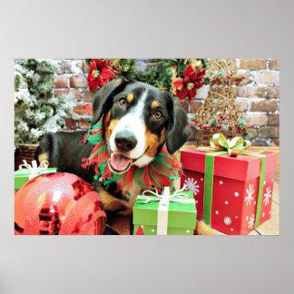 Christmas - Entlebucher Mountain Dog - Eiger Poster