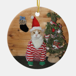 Christmas Eve Cat/Kitty Ceramic Ornament