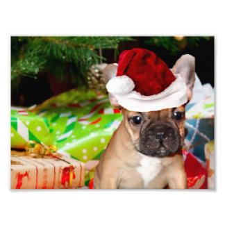 Christmas French Bulldog Photo Print