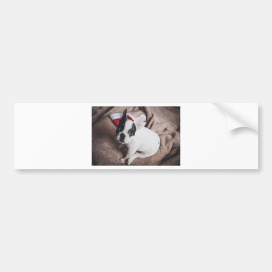 Christmas Frenchie Bumper Sticker