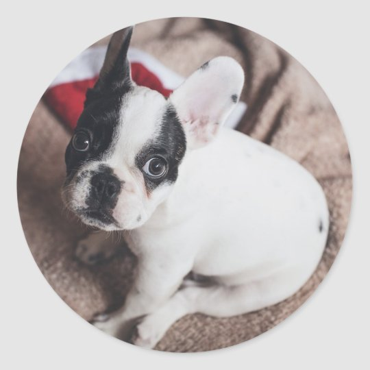 Christmas Frenchie Classic Round Sticker