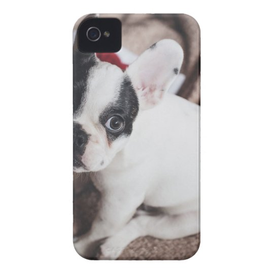 Christmas Frenchie iPhone 4 Covers
