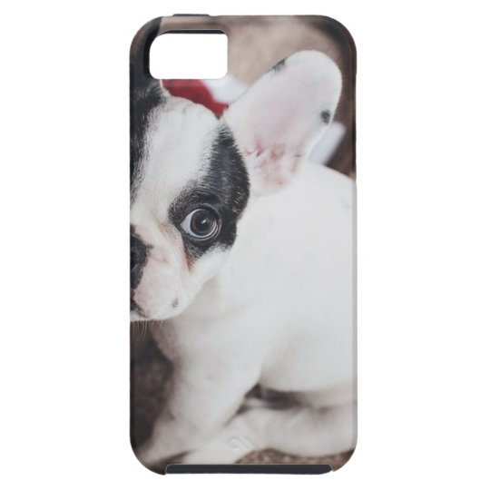 Christmas Frenchie iPhone 5 Case