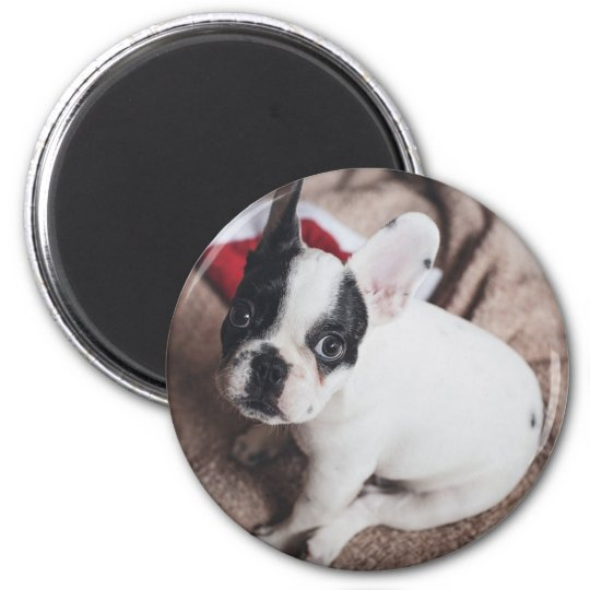 Christmas Frenchie Magnet