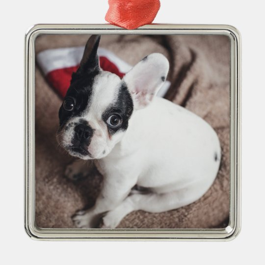 Christmas Frenchie Metal Ornament