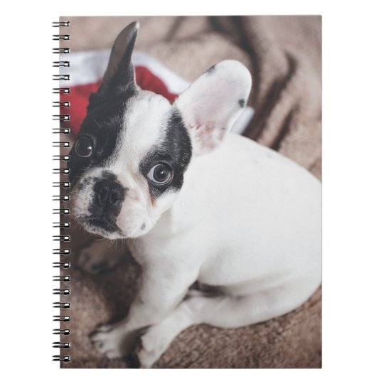 Christmas Frenchie Spiral Notebook